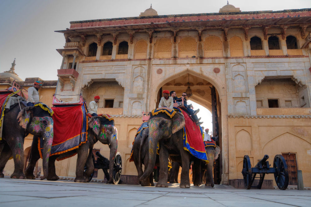 Elephants rides at Unesco's world heritage site Amer Fort, near Jaipur