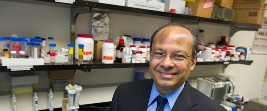Professor Srinivas Sridhar Photo by Mary Knox Merrill/Northeastern University