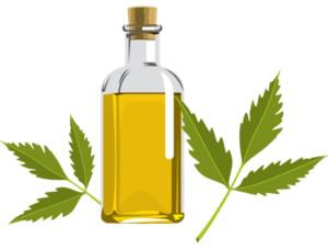 Neem Oil (Photo: New Health Advisor)