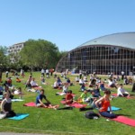 yoga-mit-16-6