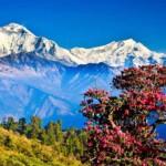 Bhutan-scene