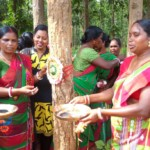 Women Power-Timber