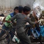 garbage-goat-cart