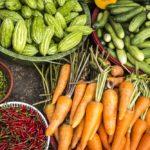 Vegetables-Photo-Megan Hodges