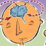 mindful-science-Illustration by Kathleen M.G. Howlett