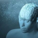 Brain-Harvard-iStock
